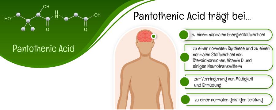 Pantothenic Acid Infografik