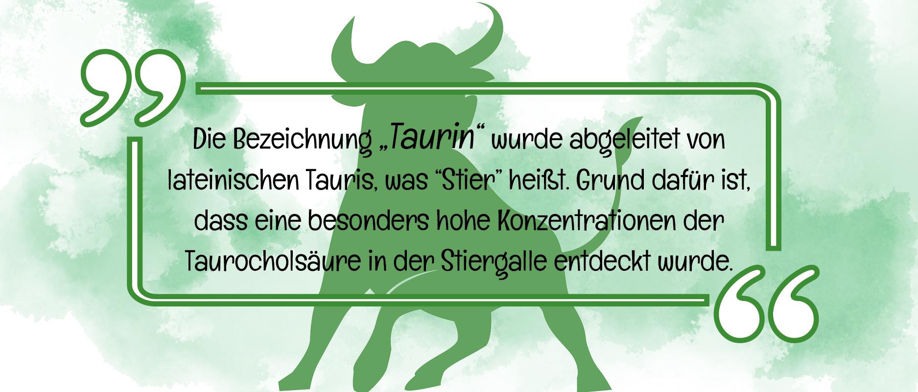 Taurin Infografik